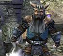 Skarvig Ironbeard