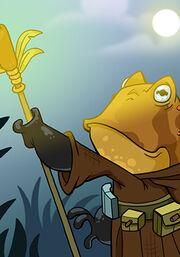 Frog Sage B