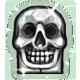 File:Crystal Skull Badge.png