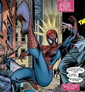 Spider-Woman May Parker2