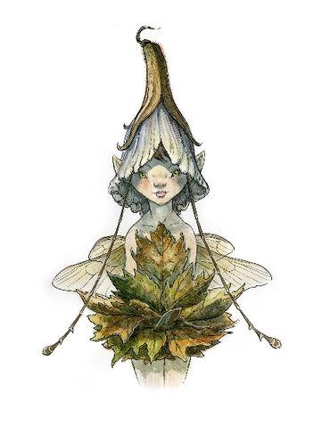 File:Flowerhead-1-.jpg