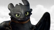 Dragon hero toothless
