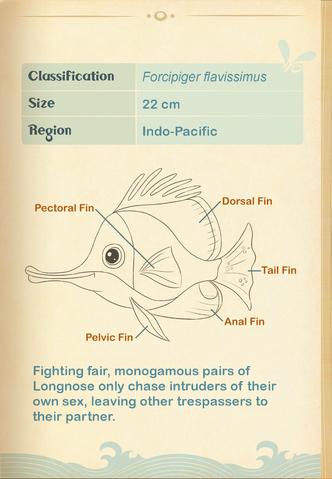 File:Yellow Longnose Butterflyfish§Aquapedia2.png