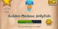 Golden Medusa Jellyfish