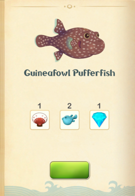 Guineafowl Pufferfish§Aquapedia
