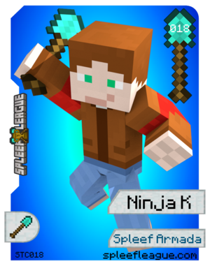 018-NinjaK