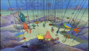 Fish Hooks Park