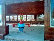 Real Krusty Krab4