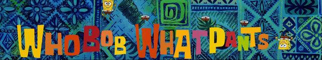 File:WhoBob WhatPants Theme1 Stitch.jpg