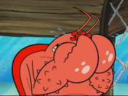 Larry the Lobster in The Krabby Kronicle-33