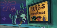 Wigs & Hairpieces