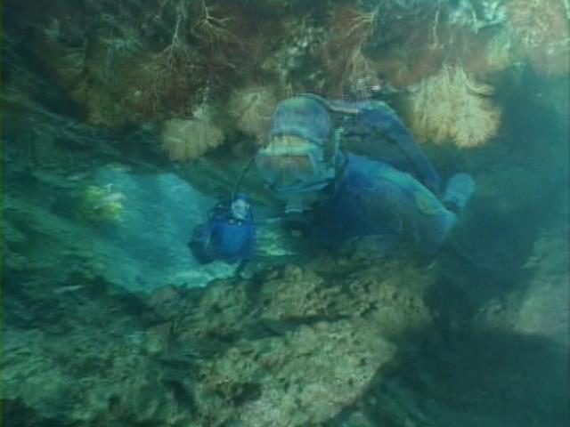 File:Case of the Sponge Bob 180.png