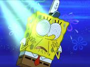 Moldy Sponge 010