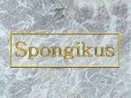 Spongikusgerm