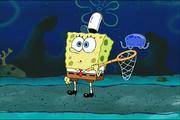 Jellyfish hunter spsurprisewhobehind