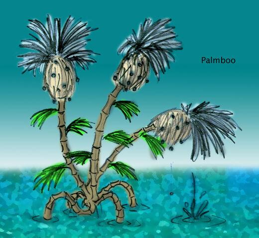 File:Palmboo.jpg