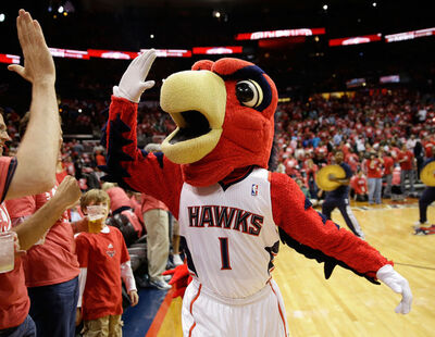 Harry the Hawk
