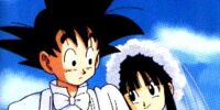 Goku and ChiChi Wedding