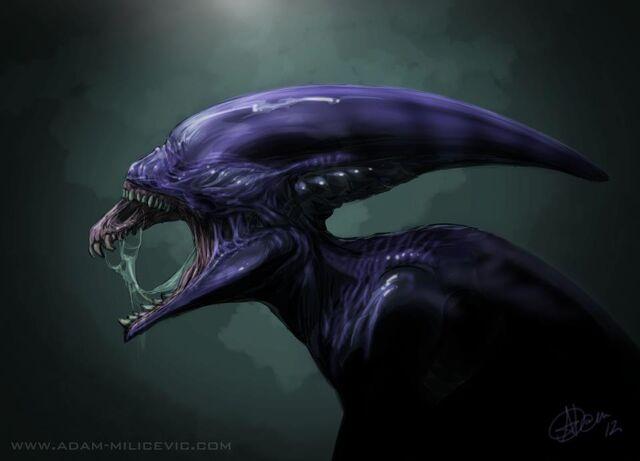 File:Prometheus proto alien xenomorph.jpg