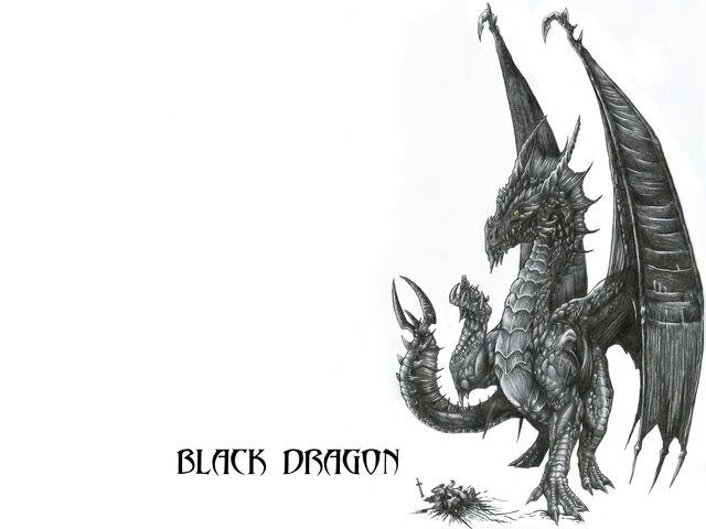 File:Wallpaper Black Dragon by AlphonseCapone.jpg