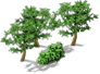 File:Decoration Poplar.png