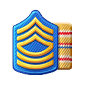 File:Badge Military Level 14.png