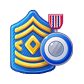 File:Badge Military Level 17.png
