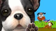 SSB4-Wii U Congratulations Duck Hunt All-Star