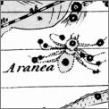 AraneaJohnHill