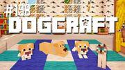 Dogcraft 198
