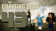 Crafting Dead 43