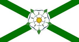 Vlag van Newport.png