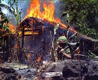 Burning Viet Cong base camp.jpg