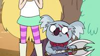 S2E13 Axe koala looking ashamed