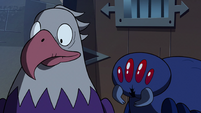 S2E35 Bald eagle and giant spider nod their heads