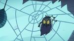 S2E2 Ludo crawling on spider web