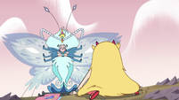 S2E15 Queen Butterfly landing on the ground