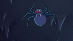 S2E2 Giant spider pounces on top of Ludo