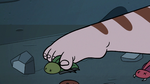 S3E6 River Butterfly moving dead bug with his toes