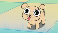 S2E6 Laser puppy looking adorable