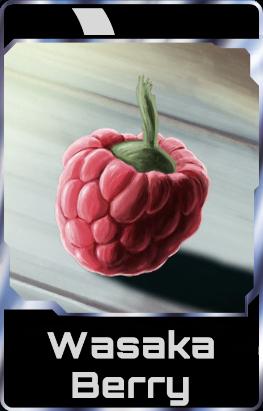 Wasaka Berry