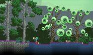 Eyeball Trees