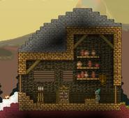 Avian house