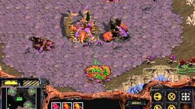 Starcraft Brood War - Zerg Campaign Mission 1 - Vile Disruption Walkthough Lets Play