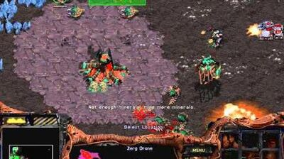 Starcraft Brood War - Zerg Campaign Mission 8 - To Slay the Beast Walkthough Lets Play