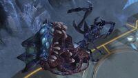 Nafash Corpse Harvest of Screams SC2-HotS