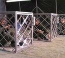 Prisoner cages