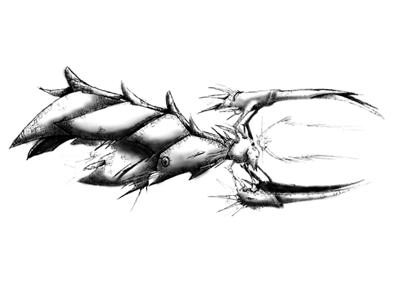 Crim28 thumb