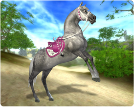 Starstable1.png
