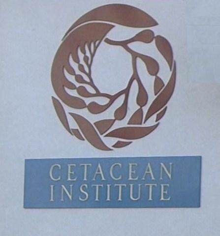 File:Cetacean Institute sign.jpg